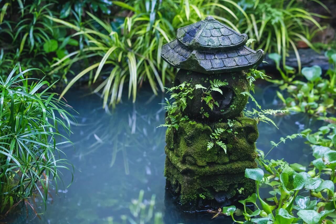 Build Your Own Garden Wildlife Pond